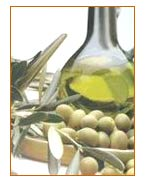 olives and oil - image courtesy of Monini