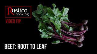 beet root stem and leaf